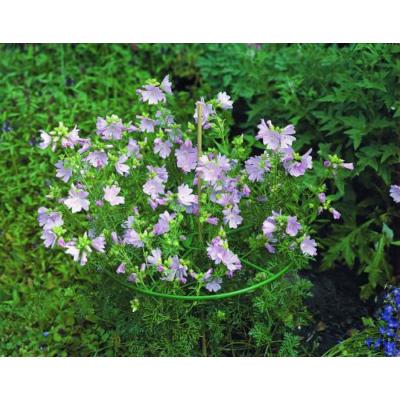 Virágtartó gyűrű vario 3 db