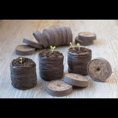 Növény ültető tőzeg korongok 48 db-os*