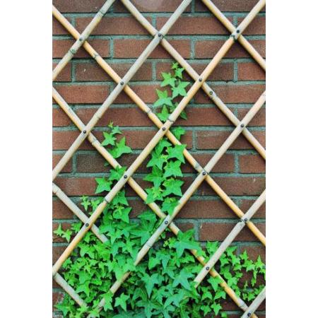 Bambuszrács 45x180 cm (széthúzható)*