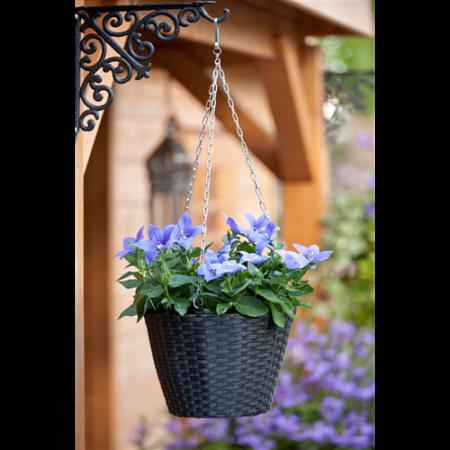 """Függőkosár virágtartó """"rattan design"""" 19x25 cm*"""