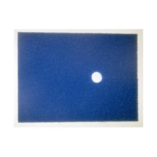 Tavi Szűrőszivacs Filtra Pure szűrőkhöz