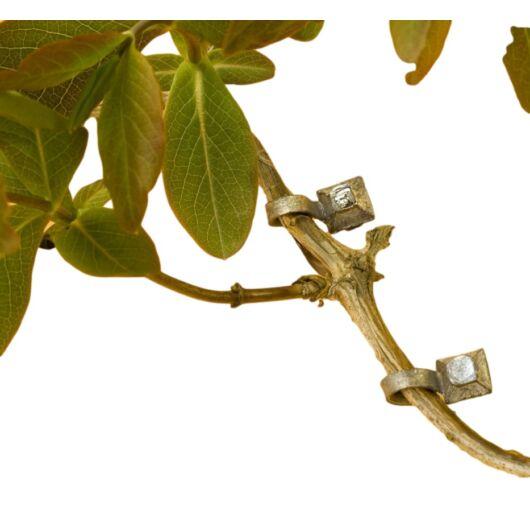 Növény rögzítő, kúszónövényekhez 10 db*