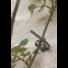 Kép 3/3 - Növény rögzítő, zöld 6 db*